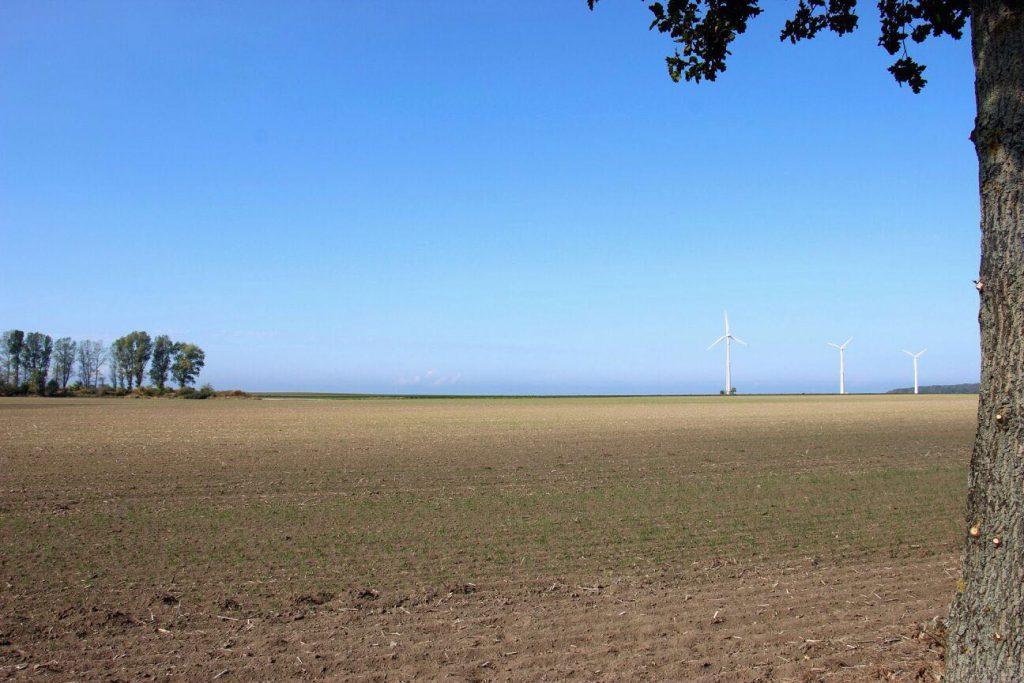 Das Feld auf dem das Baugebiet geplant ist 2